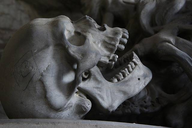 Free photo: Skull, Cemetery, Genoa, Teeth, Bone - Free Image on Pixabay - 476740 (55086)