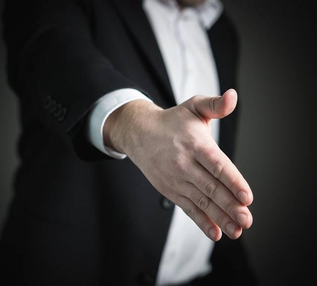 Free photo: Handshake, Hand, Give, Business - Free Image on Pixabay - 2056021 (55666)