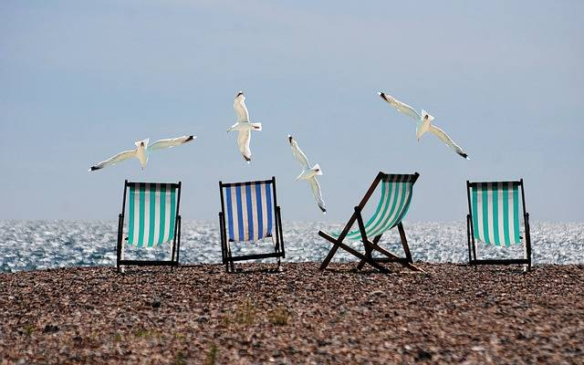 Free photo: Summer, Beach, Seagulls, Deckchairs - Free Image on Pixabay - 814679 (56270)