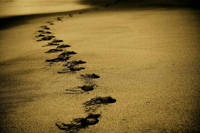 Free photo: Sand, Footsteps, Footprints, Beach - Free Image on Pixabay - 768783 (56274)