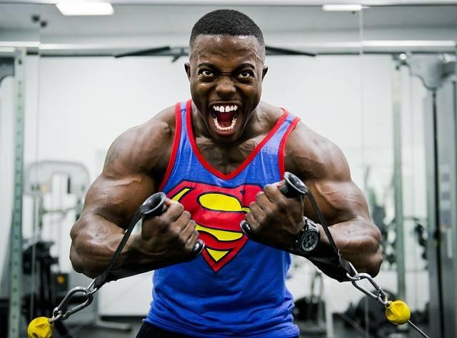 Free photo: Bodybuilder, Weight, Training - Free Image on Pixabay - 646482 (57269)