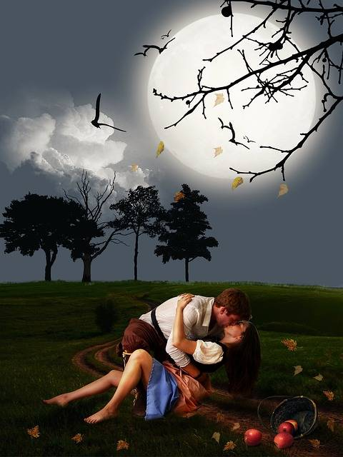 Free illustration: Couple, Lover, Romantic Scene - Free Image on Pixabay - 564232 (58244)