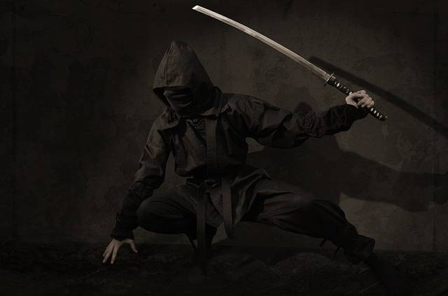 Free photo: Ninja, Warrior, Japan, Assassin - Free Image on Pixabay - 2007576 (59241)