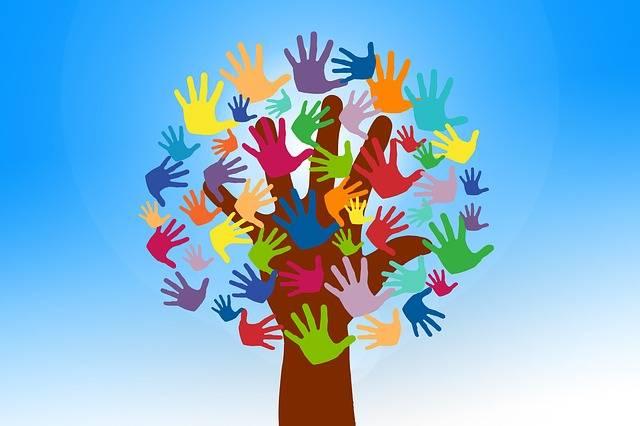 Free photo: Volunteers, Hands, Tree, Grow - Free Image on Pixabay - 2729695 (59513)