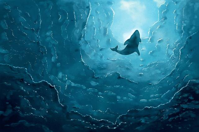 Free illustration: The Whale, Sea, Ocean, Blue, Water - Free Image on Pixabay - 2464799 (60858)
