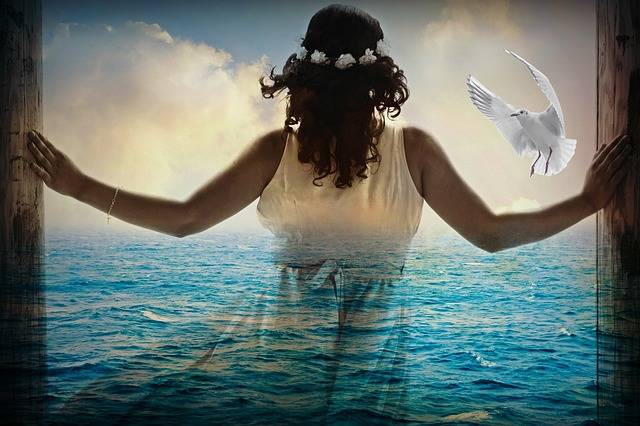 Free photo: Woman, Girl, Sea, Silhouette, Ocean - Free Image on Pixabay - 2888122 (61133)