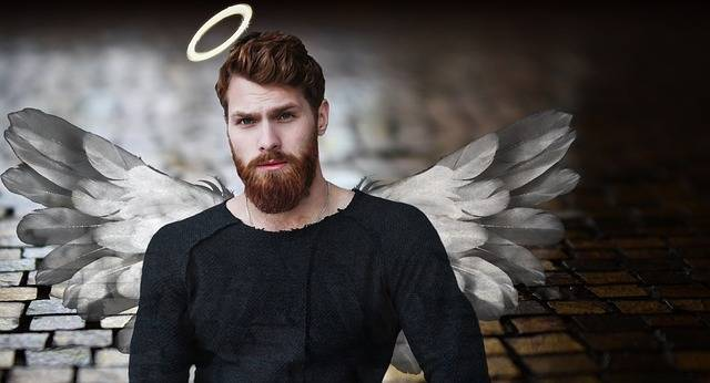 Free photo: Man, Angel, Halo, Wing, Gut, Male - Free Image on Pixabay - 2854030 (61648)