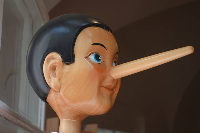 Free photo: Pinocchio, Nose, Lying Nose, Long - Free Image on Pixabay - 2917652 (66052)