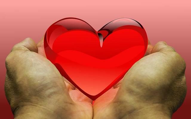 Free photo: Feeling, Love, Heart, Donation - Free Image on Pixabay - 2446129 (67279)
