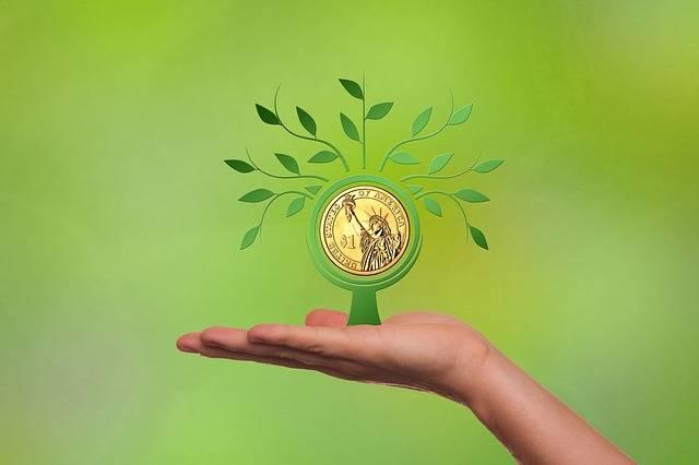 Free illustration: Financing, Business, Dollar, Hand - Free Image on Pixabay - 2379786 (71706)