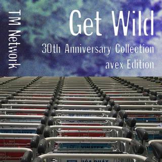 「Get Wild 2015 -HUGE DATA-」
