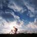 転倒するリスクを減らし、高齢者の自転車事故を防ごう!