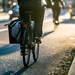 超重要!季節ごとの自転車通勤用ウインドブレーカー選び