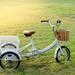 【子供を乗せる】安全走行に向いている三輪自転車の特徴