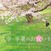 入学・卒業のお祝いコース《2/25(土)~4/30(日)》