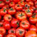 トマト嫌いを克服しよう!トマト嫌いでも食べられるおいしい料理!レシピ付き!