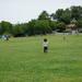 週末や夏休みに子供と行きたい!横浜市の一日遊べるおすすめの公園3選☆