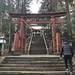 大晦日はお礼参りにパワースポット、祇園神社へ♡