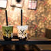 福岡天神・博多で人気のタピオカ店子連れで行けるか調査!ママだって『タピ活』したい♡