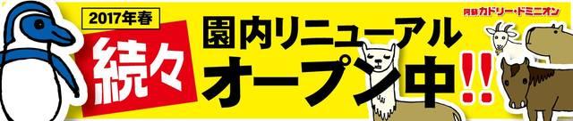 園内リニューアル計画 - 阿蘇カドリー・ドミニオン (23944)