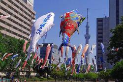 東京スカイツリーと鯉のぼりのコラボスポット