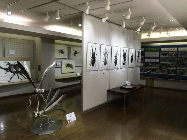 ののはな館||金沢動物園公式サイト|公益財団法人 横浜市緑の協会 (34266)