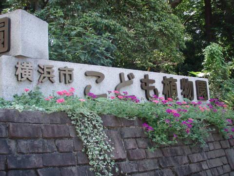 こども植物園公式サイト|公益財団法人 横浜市緑の協会 (34280)