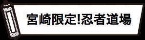期間中のイベント「宮崎限定!忍者道場」