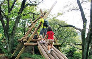 グランデコに木製遊具の公園が登場!7月1日~11月まで