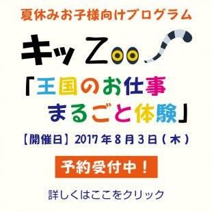 8月3日(木) キッZOO「王国のお仕事まるごと体験」予約受付中 | 神戸どうぶつ王国 (49405)