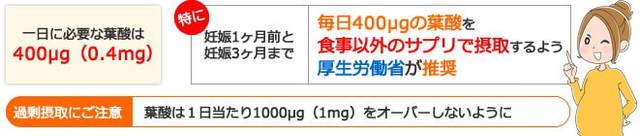 一日どのくらい摂取するの?葉酸の基準値とは?