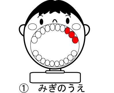 イラストカード - ふなびき歯科 (86711)
