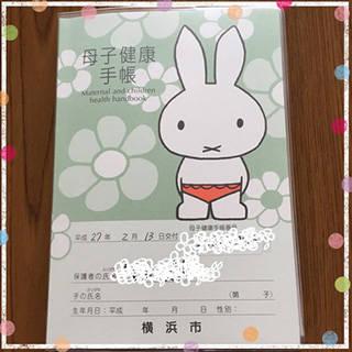 母子手帳 11w3d : かわいいベビーが来る日まで (89704)