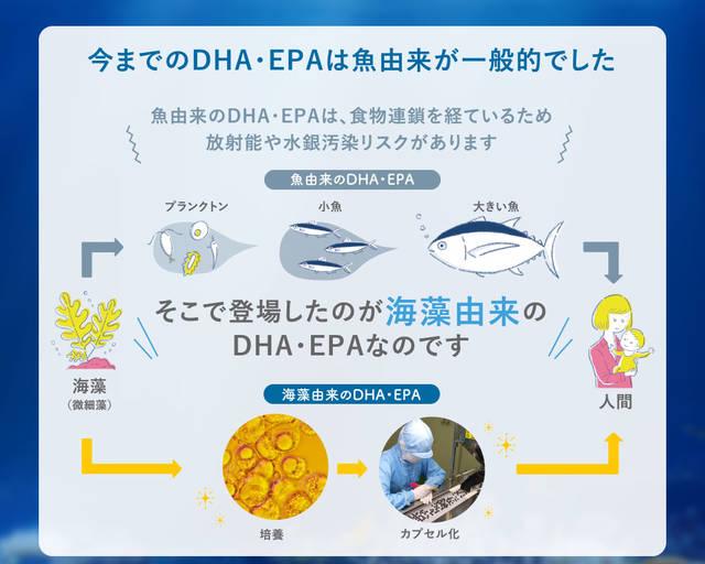 赤ちゃんの未来のためにノコア葉酸サプリ―葉酸+DHA・EPAを賢く補う-[NOCOR STORE] (117765)