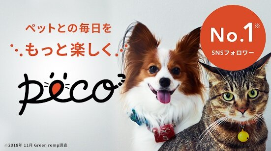 『PECO(ペコ):いぬねこペット動画 かわいいどうぶ...