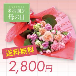 【楽天市場】【母の日ギフト】カーネーション花束 (19058)
