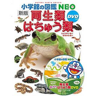 〔新版〕両生類・はちゅう類 DVDつき (小学館の図鑑 NEO)  | Amazon (46626)