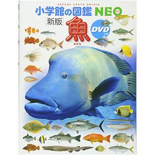 DVD付 新版 魚 (小学館の図鑑 NEO) (77492)