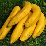 【低カロリー&栄養バランス抜群!】知られざるバナナの秘密♡