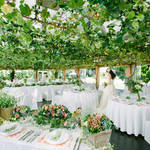 【ぶどうの樹の結婚式◎】福岡で叶える理想のガーデン&リゾートウエディング
