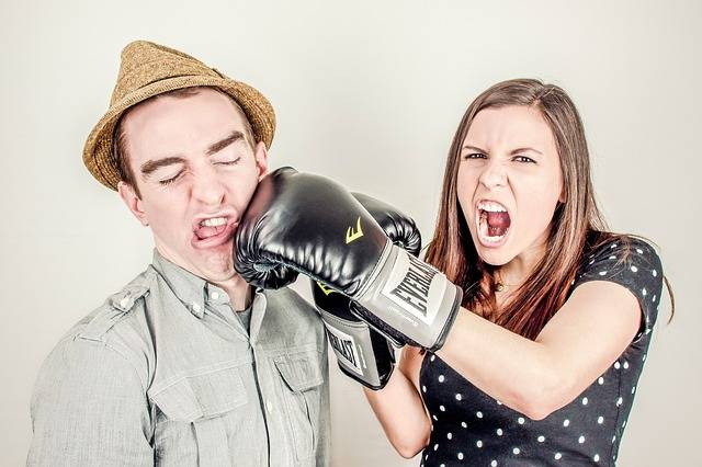 Free photo: Argument, Conflict, Controversy - Free Image on Pixabay - 238529 (1540)