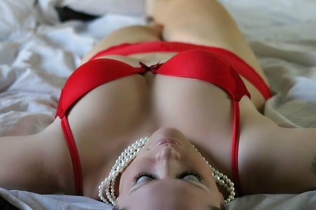 Free photo: Girl, Woman, Sexy, Lingerie, Posing - Free Image on Pixabay - 254708 (4197)