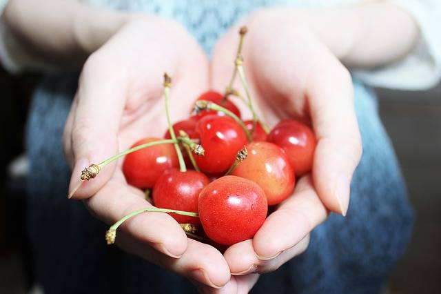 Free photo: And Cherries, Red, Fruit, Sweet - Free Image on Pixabay - 1532124 (4276)