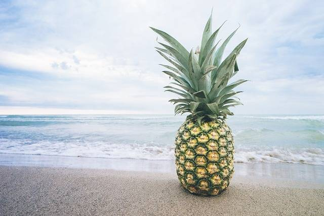 Free photo: Beach, Fruit, Lake, Ocean - Free Image on Pixabay - 1850939 (4989)