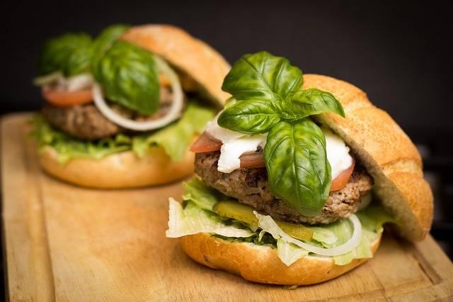 Free photo: Hamburger, Food, Meal, Tasty - Free Image on Pixabay - 494706 (5011)