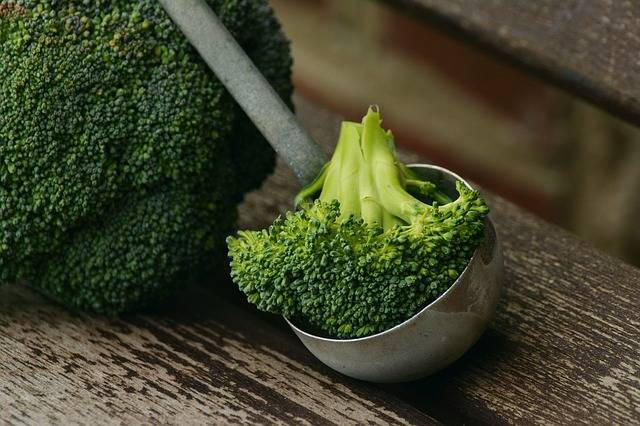 Free photo: Broccoli, Vegetables, Healthy, Cook - Free Image on Pixabay - 1974764 (5253)