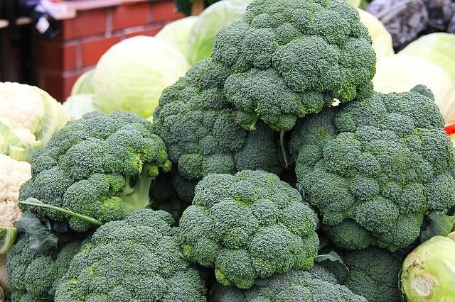 Free photo: Broccoli, Fruits, Fresh, Sweet - Free Image on Pixabay - 1235677 (5256)