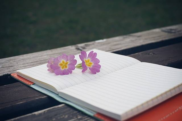 Free photo: Bench, Flower, Notebook, Pen - Free Image on Pixabay - 1289528 (5314)