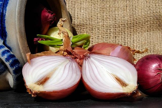 Free photo: Onions, Red, Brown - Free Image on Pixabay - 2147153 (5403)