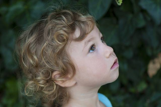 Free photo: Face, Little Girl, Curls - Free Image on Pixabay - 2041148 (5559)